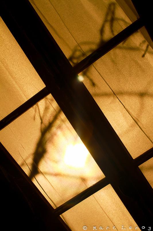Thv 2013 - Fenêtre